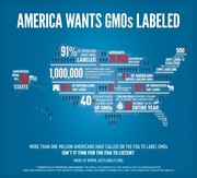 www.justlabelit.org - AMERICA WANTS GMOs LABELED