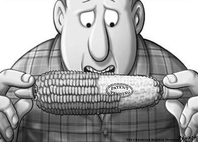 GMO Patent Pending