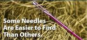 Needle-Haystack-744598