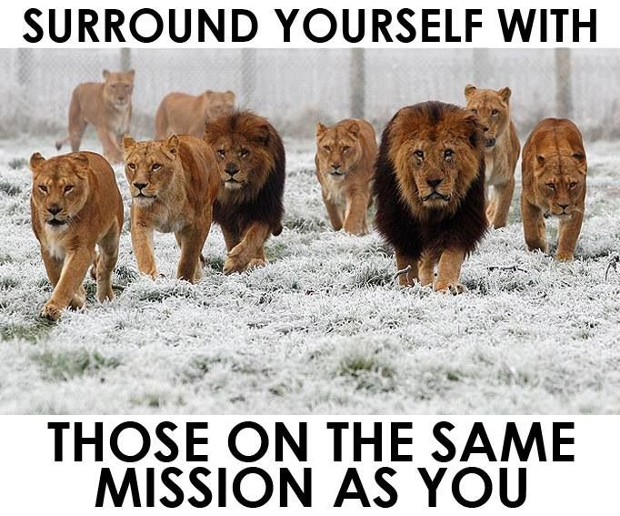Surround Yourself With Those On The Same Mission As You