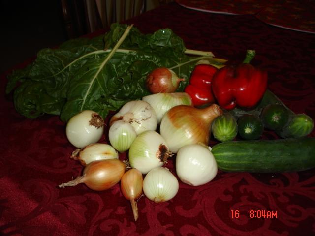 some Harvest 2010