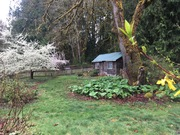 Live Permaculture Consultation Weekend
