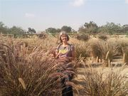 Passeio na regiao do Kibutz Holit