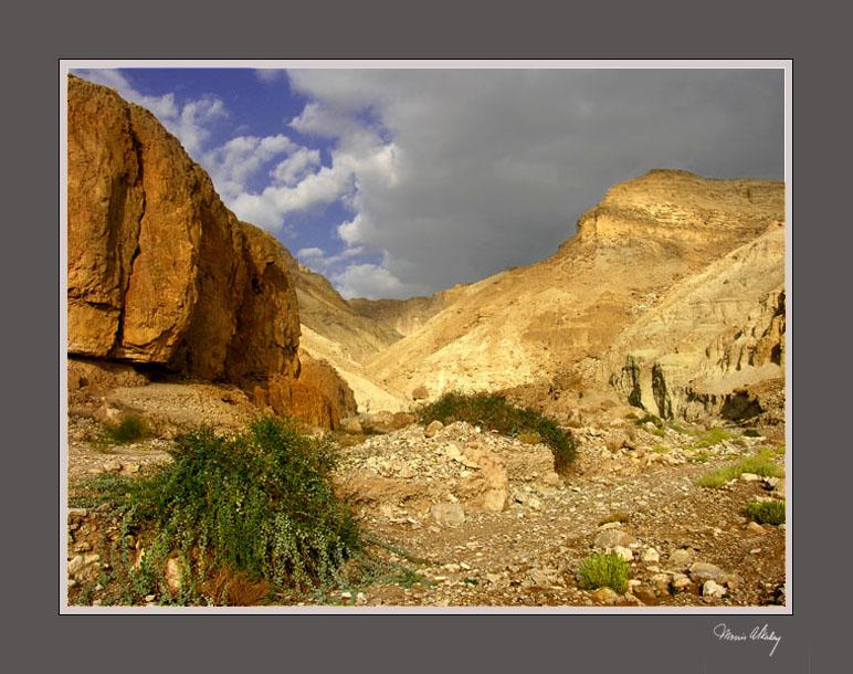 ISRAEL rocky_valley_dead_sea