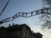 Um ataque a memoria do Holocausto