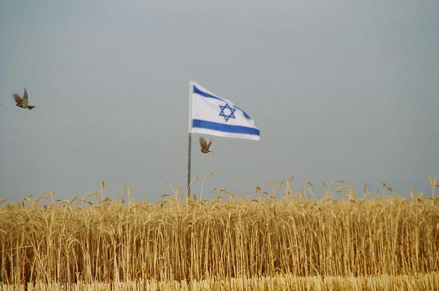 Shavuot-FlagSparrow
