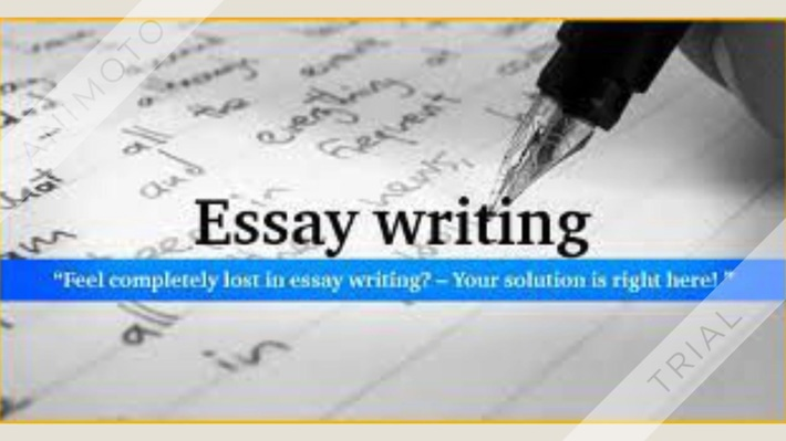 Essay Writing Tips   Essay Writing Services
