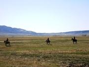 2011 Literature & Landscape of the Horse Retreat