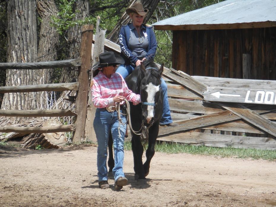 2014 Literature & Landscape of the Horse Retreat