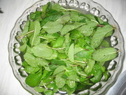 Fresh mint for tea