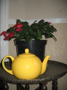 The Yellow Teapot x