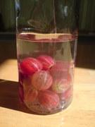 pink gooseberry vodka