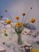 White Room Birthday Dinner