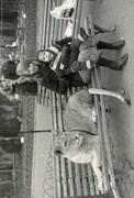 marisa laura zoo de roma