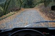 the_road_into_bothe_napa