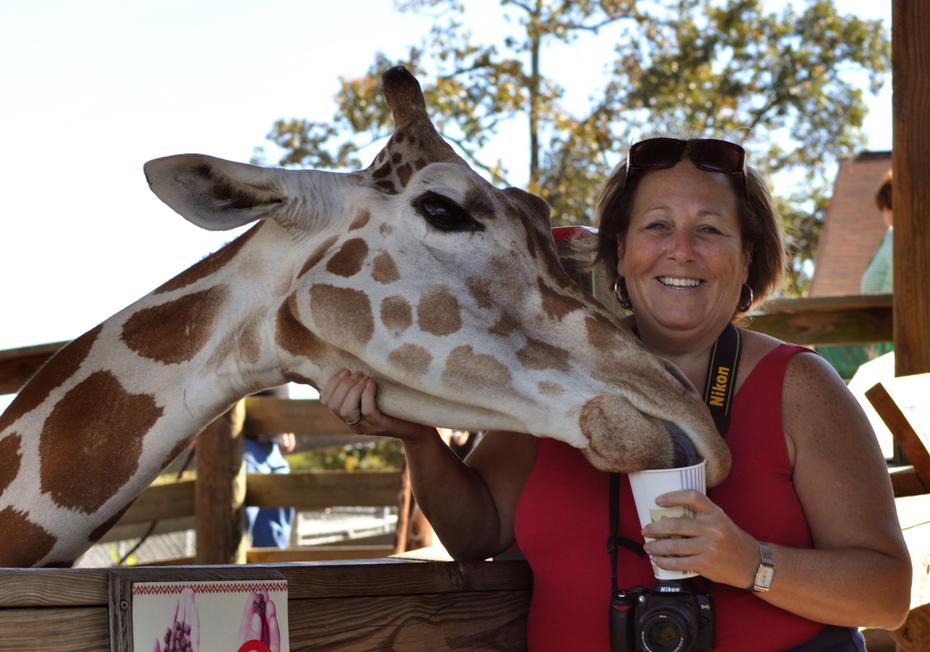 sheryl and giraffe