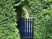 Backyard Gateway