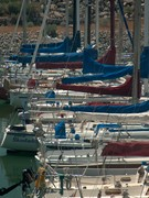 1ut gsl marina day (3)
