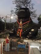 India 2011 059