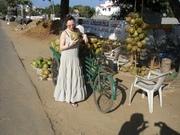 India 2011 163