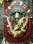 India 2011 096