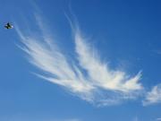 Облако-бабочка