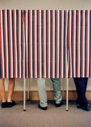 Voting and the Constitution
