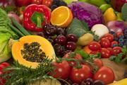Explore Raw Food Diets