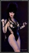 Elvira, Mistress of the Dark Fangroup
