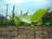 Grandview Woodland  (Com…