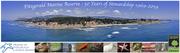 "Fitzgerald Marine Reserve 50-Year Anniversary ""Meet & Greet"""