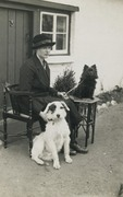 Lady with black Pomeranian dog  1920s Private real photo