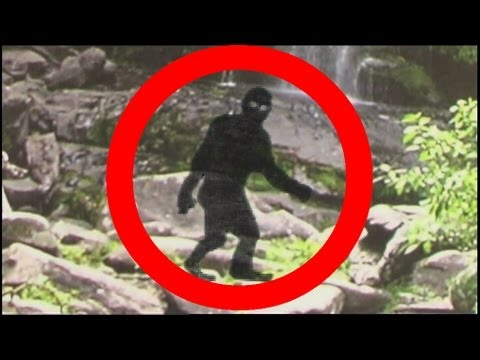 HOW TO SEE BIGFOOT