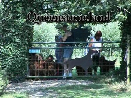 Queenstoneland Hulst
