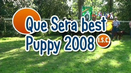 Que Sera best puppy 2008 I