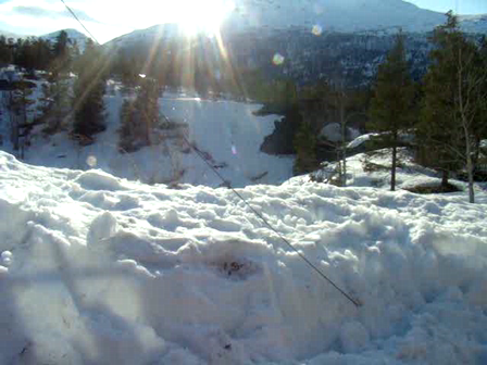 Zeta & Snow