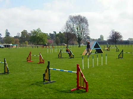 Red agility course