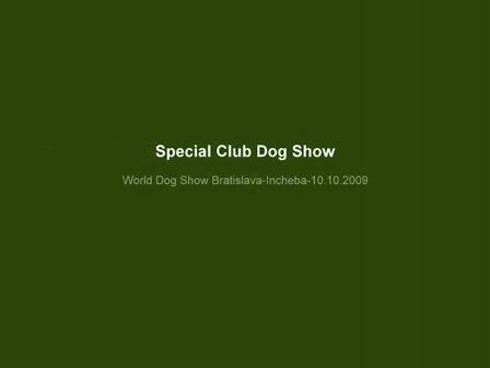 Special Club Dog Show Bratislava 10.10.2009