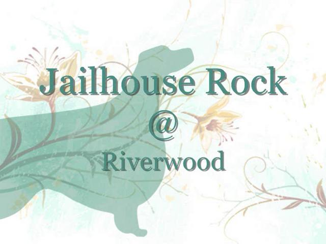 """Jailhouse Rock"""