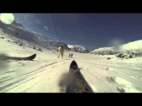 Winter Fun with Irish Setters: Skijoring in Norway