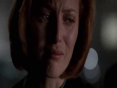 X-Files  ~  Fragile