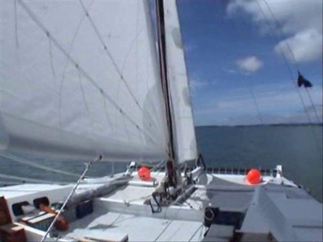 sailing wakataitea