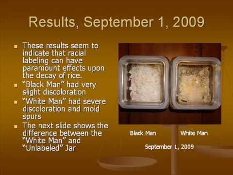 The Racial Intent experiment.