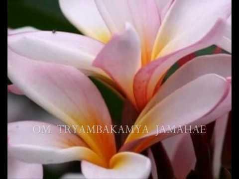 Om Tryambakam - The LIfe-Giving Prayer