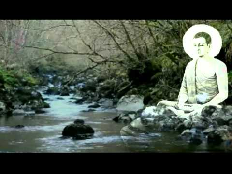 Saggio Maestro Music Relax (Silence-Robert Haig Coxon)