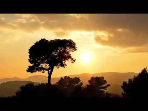 MUSIC OSHO - MEDITATE - DANCE - SIGN