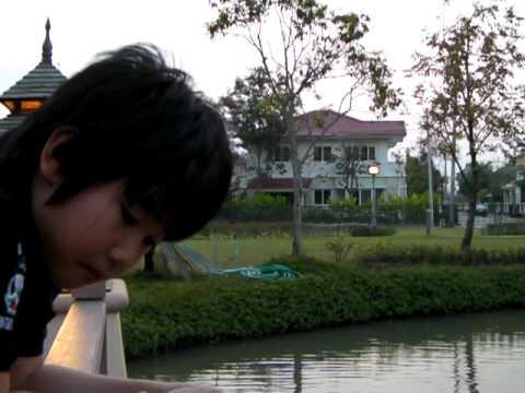 Yoshi's feeding the fish