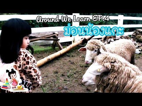 Around We Learn EP.4 - ม่อนน้องแกะ