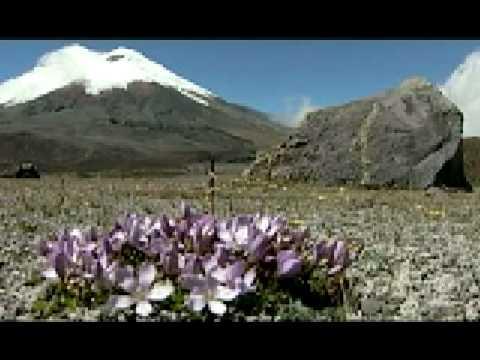 ecuador - turismo