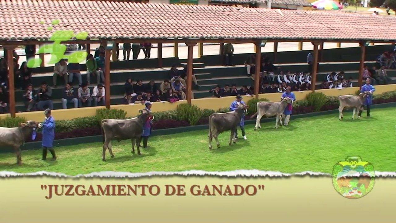 """73 FERIA EXPO PRODUCCIÓN """"MACAJI 2013"""" RIOBAMBA-ECUADOR (RESUMEN)"""